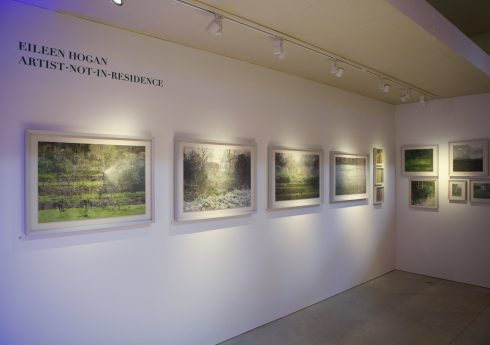 Photos by Sin Bozkurt© for The Garden Museum