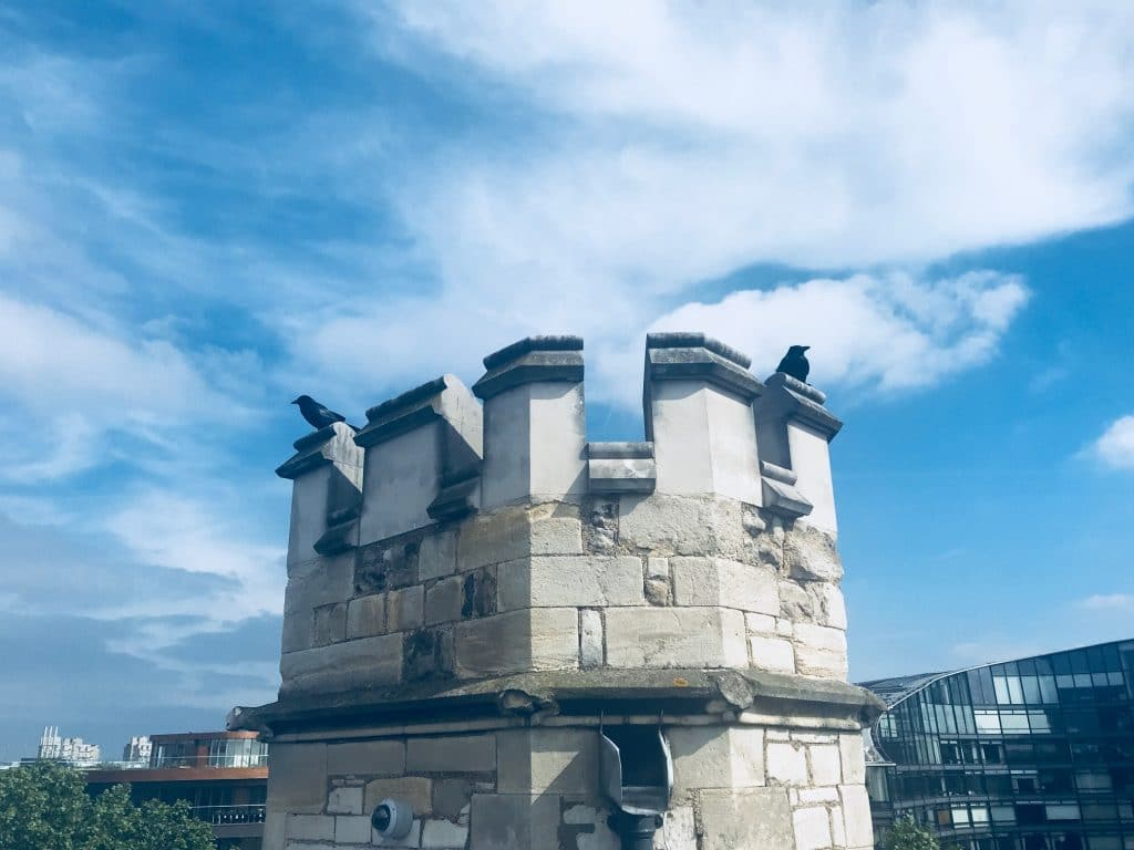 Crows up on the tower