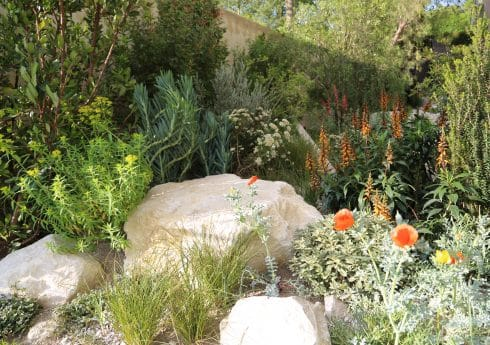 Andy Sturgeon's 2016 garden at the RHS Chelsea Flower Show