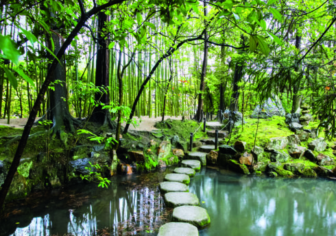 Japanese Garden. Tenjuan, a sub-temple within the Nanzen-ji temple complex, Kyoto, Japan. Picture credit: © Claire Takacs