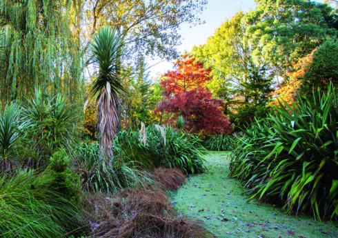 Native Planting. Flaxmere Garden, Hawke's Bay Region, New Zealand. Open to the public. Picture credit: © Claire Takacs