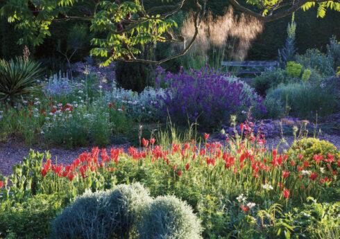 The Gravel Garden c.2009. Taken by Steven Wooster.