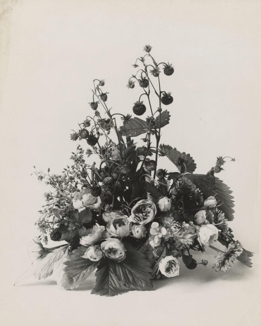 Constance Spry grating veg. Silver Gelatin Print. 10 cm x 10 cm.